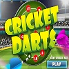 Online Cricket Darts Game