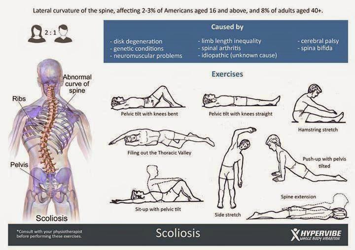 El tratamiento de la espalda de la columna vertebral del vídeo