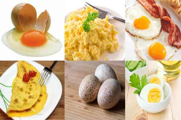Macam-macam Olahan Telur