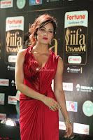 Videesha in Spicy Floor Length Red Sleeveless Gown at IIFA Utsavam Awards 2017  Day 2  Exclusive 37.JPG