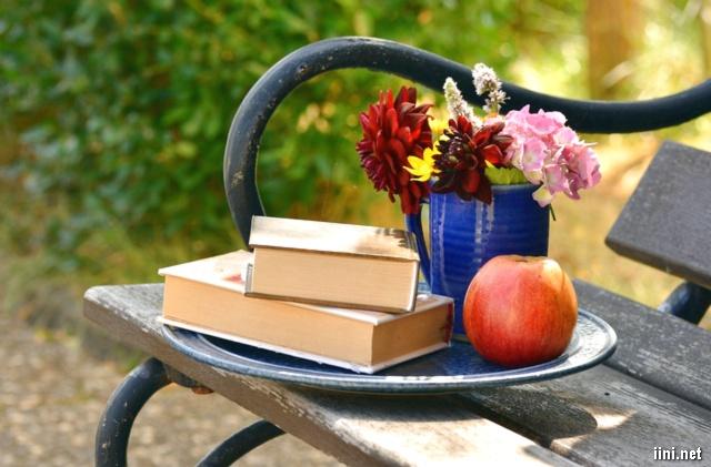 ảnh những cuốn sách và hoa