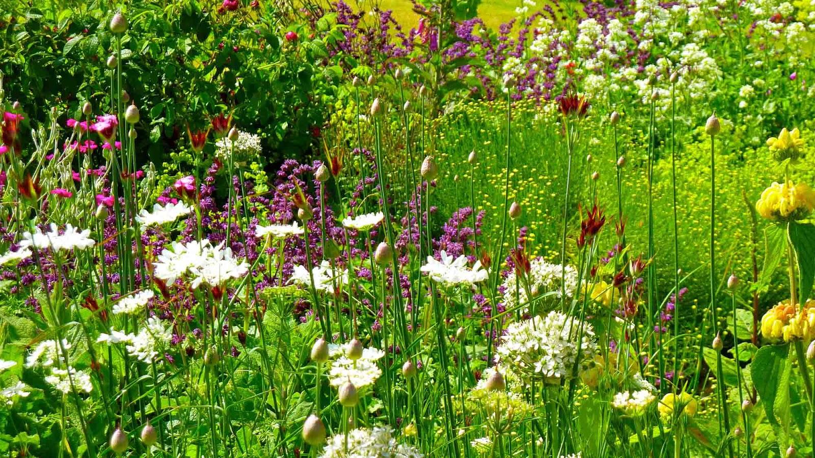 jardines naturalistas que favorecen la biodiversidad.