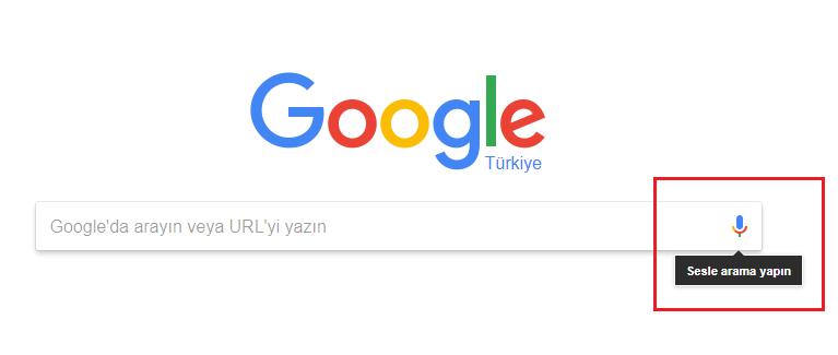 google sesli arama