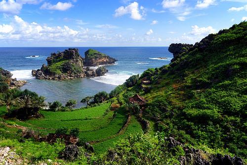 Keindahan Alam Bawah Laut Pantai Nglambor - Gunung Kidul