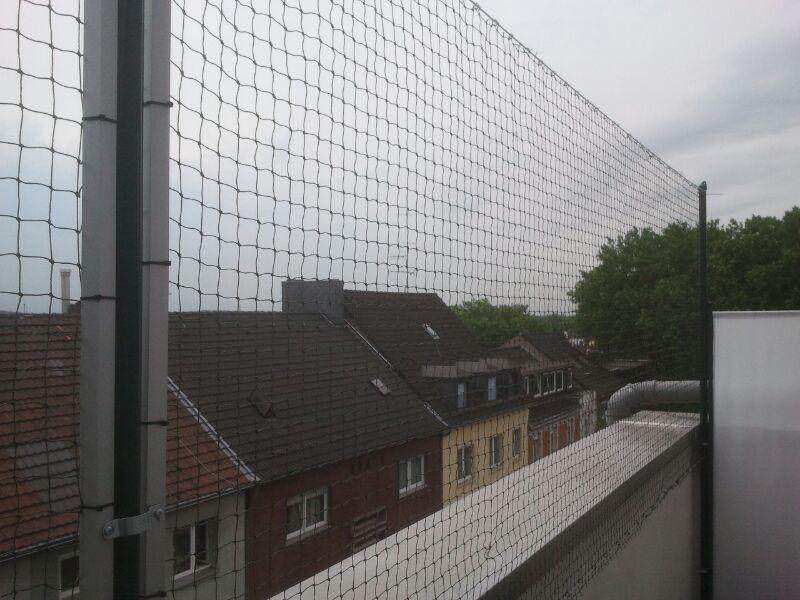 katzennetz nrw die adresse f r ein katzennetz das weg schiebbare katzennetz f r balkone vom. Black Bedroom Furniture Sets. Home Design Ideas