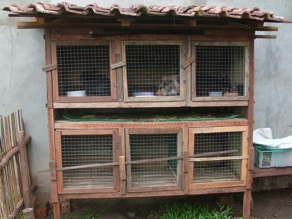 Ilmu Beternak Ayam Kampung : Model tipe kandang jika lahan ...