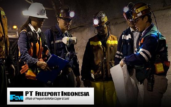 Lowongan Kerja Tambang Emas PT Freeport Indonesia Besar Besaran
