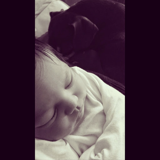 Sleeping-Baby-Sleeping-Dog-tasteasyougo.com