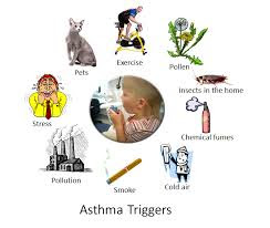 Causes-of-Asthma-In-Hindi