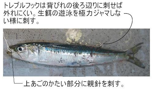 関西の船釣りで釣れる 竿とリール ヒラメ 釣り 仕掛け