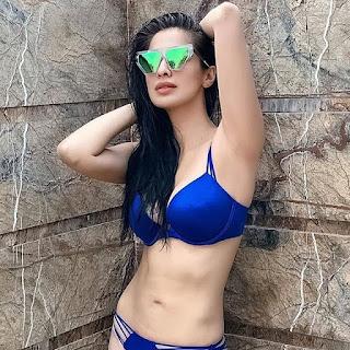 Bikini Babes: Raai Laxmi & Shibani Dandekar Navel Queens