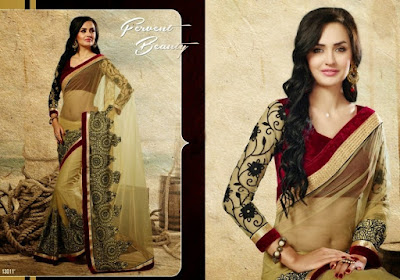 Indian-designer-embroidered-blouse-designs-for-plain-saree-3