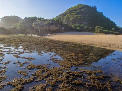 pantai ngrumput gunung kidul yogyakarta