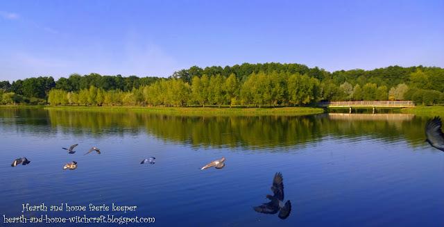 Пруды - районный парк культуры и отдыха г. Гомеля, Беларусь (1-я часть)