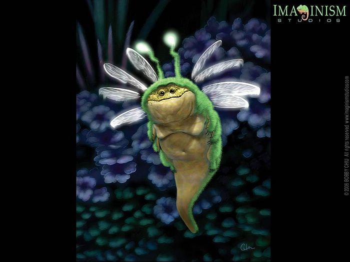 Cute Llama Wallpaper Desktop Funny Insect Wallpaper Funny Animal