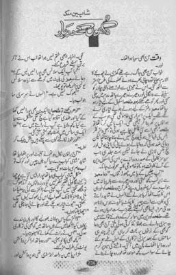 Dukhon ke darbar novel by Shaheen Malik pdf
