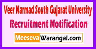 VNSGU Veer Narmad South Gujarat University Recruitment Notification 2017  Last Date 25-05-2017