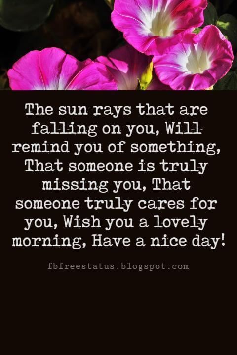 Sweet Good Morning Messages, The sun rays that are falling on you, Will remind you of something, That someone is truly missing you, That someone truly cares for you, Wish you a lovely morning, Have a nice day!