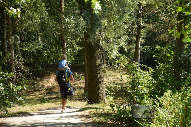 Center Parcs Bispinger Heide w Dolnej Saksonii - informacje praktyczne