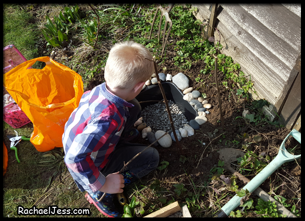 creating our mini pond