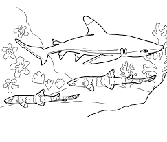 Cute Shark Coloring SHeet On Sea Coloring Pages