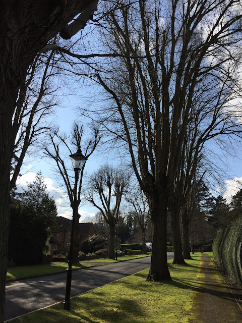 Main Avenue, Moor Park estate, Hertfordshire
