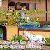 బుజ్జి మేక బుజ్జి మేక ఏడకెల్తివీ తెలుగు పిల్లల పాట   పిల్లల పాటలు