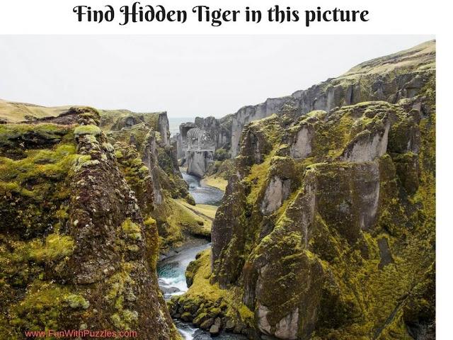 Hidden Tiger Picture Puzzle