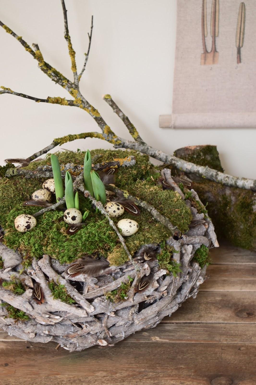 Frühlingsdeko basteln mit Moos, Wachteleier und Holzkranz. Deko Frühling einfach selber machen DIY Ostern Osterdeko Naturdeko