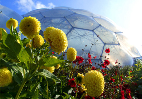 The Eden Project by Bike