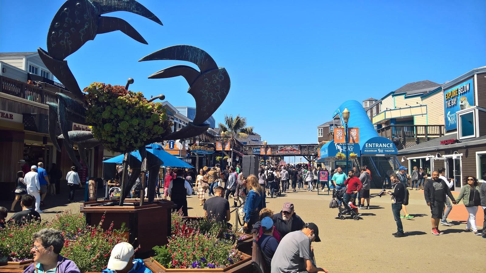 san francisco kalifornia fisherman's wharf turistirysä matkailu matkajuttu mallaspulla