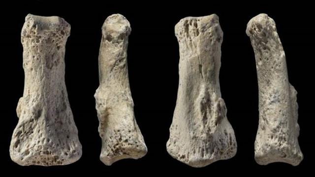 Humanos saíram da África bem antes do que se pensava, aponta descoberta em Ossos