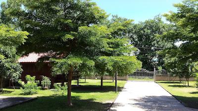 Mango Garden Guesthouse Thailand