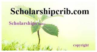 Newcastle University Brazil Scholarships