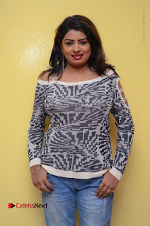 Actress Sridevi Stills in Jeans at No 1 Hero Rajendra Press Meet  0082.JPG
