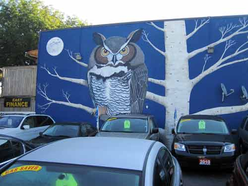 The Owl Mural