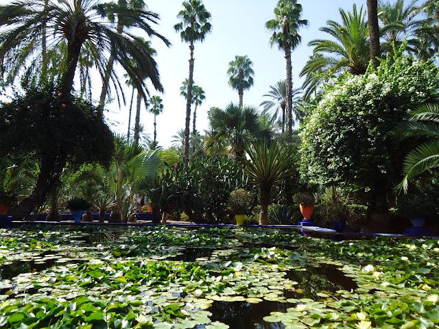majorelle+marrakech+YSL+gardens