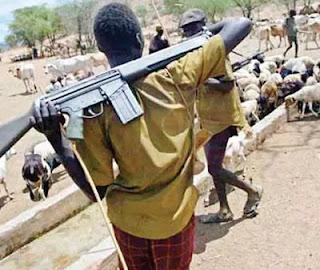 fulani cattle boys gun delta state