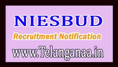 NIESBUD (National Institute for Entrepreneurship and Small Business Development) Recruitment Notification 2017