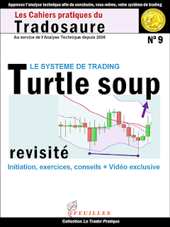 TURTLE-SOUP-FORMATION-TRADOSAURE