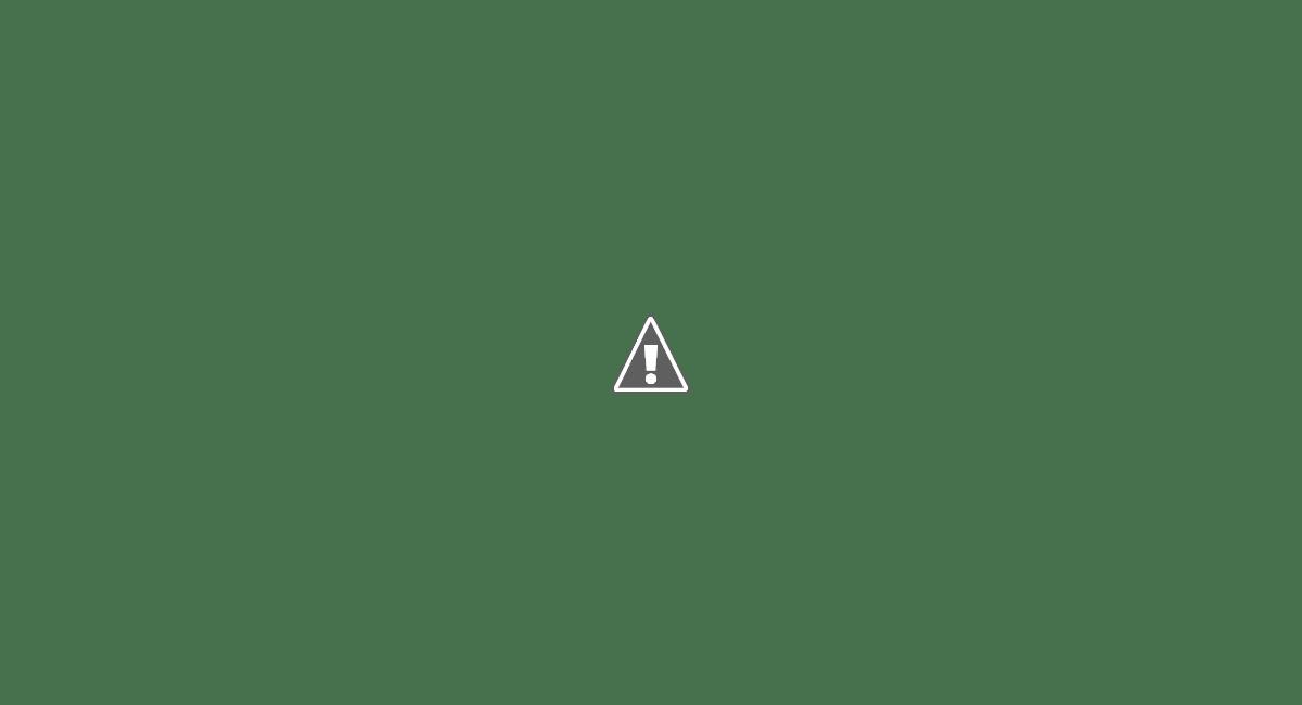 pandilla violenta cartel mara delito crimen organización