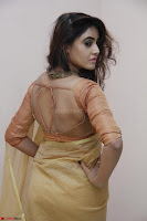 Sony Charistha in Lovely Brown Saree and Choli Spicy Pics ~  Exclusive 10.JPG