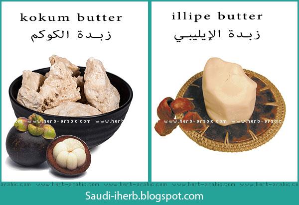 زبدة الكوكم والإليبي kokum illipe خام