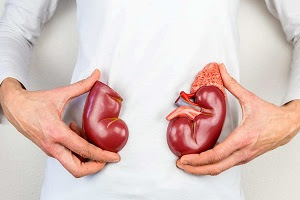 8 Simple Tips to Prevent and Treat Kidney Disease