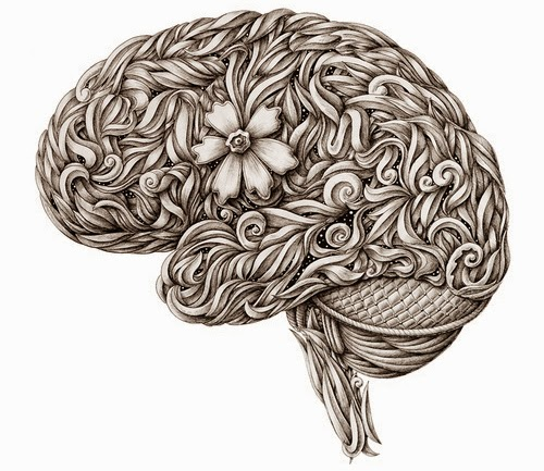 01-The-Brain-Alex-Konahin-Stylised-Anatomy-Intricate-and-Unique-Drawings-www-designstack-co