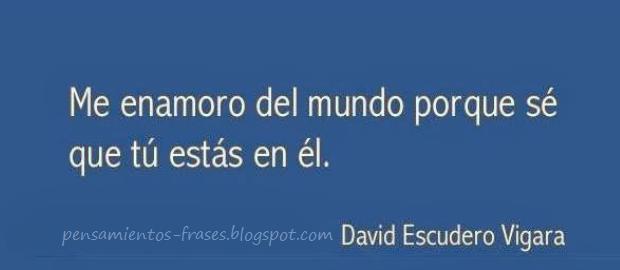 frases de David Escudero Vigara