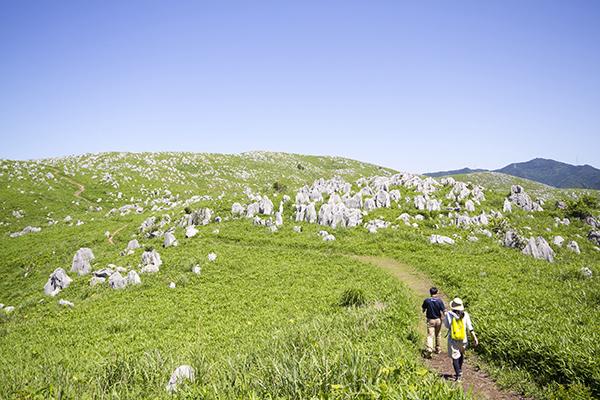 自然が作り出した、山口県一の絶景。秋芳洞とカルスト大地【Yamaguchi】 カルスト台地