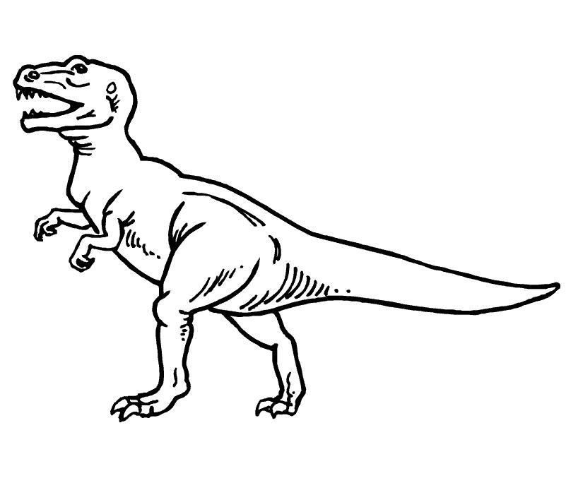 Atractivo T Rex Realista Para Colorear