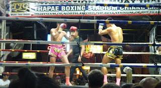 Thapae Boxing Stadium. Thai Boxing o Muay Thai.
