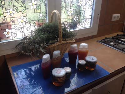 Jarabes y siropes de miel y plantas